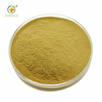 Anemarrhena Asphodeloides Root Extract
